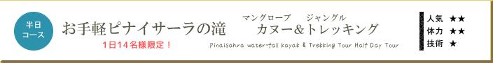 お手軽ピナイサーラの滝・マングローブカヌー&トレッキングツアー